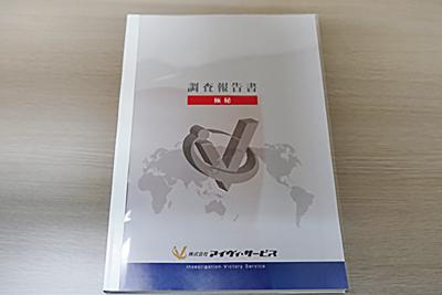 海外企業調査_報告書写真_001