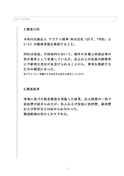 海外企業調査_報告書写真_002